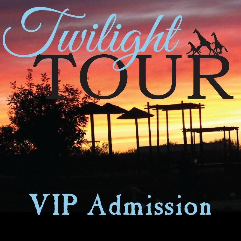 Twilight Tour VIP Admission